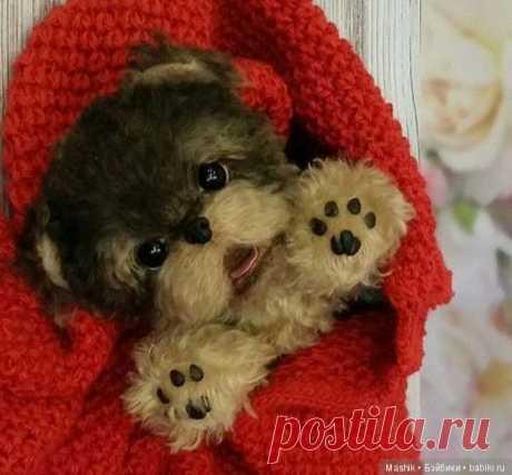 Выкройка щенка йоркширского терьера, автор Шеряева Дарья / Собака / Бэйбики. Куклы фото. Одежда для кукол