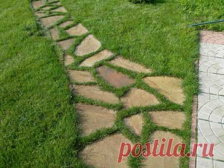 Красивые садовые дорожки, которые можно сделать самому: 4 лучших варианта | ТеремокЪ | Яндекс Дзен