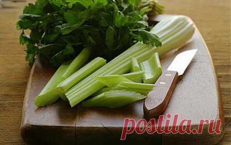 В чем польза сельдерея и в каком виде его лучше употреблять? | Еда и кулинария