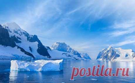 Антарктида – самый высокий и самый холодный материк