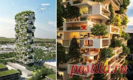 7 вертикальных садов по всему миру, которые могут превратить города в джунгли Современные города настолько быстро захватывают природные зоны, что власти и архитекторы начали всерьез задумываться над тем, как озеленить мегаполисы, не занимая полезные площади.