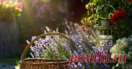 11 советов по обустройству сада в стиле прованс (фото) Рассказываем об особенностях французского деревенского стиля.