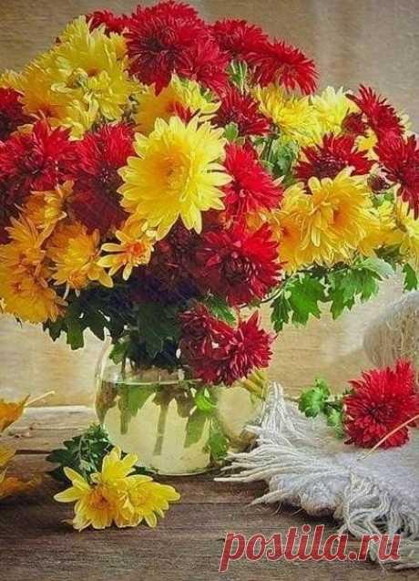 Осенние цветы нам в дар приносит осень, Чтоб не грустили мы о летних ярких днях... Пуcть Жизнь дapит Вaм людей, пoдoбныx цветaм — иcкpенниx, яpкиx, oткрытыx солнцу...