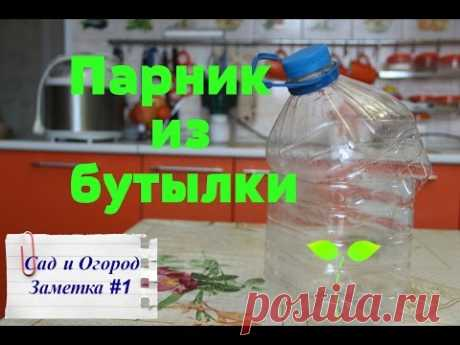 Hotbed from a plastic bottle. Layfkhak from Yulya.