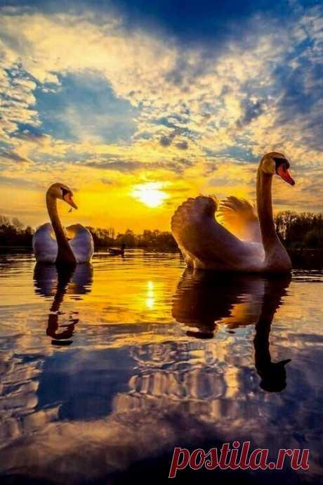 Храни Господь, столь хрупкий мир, Храни от бед и от несчастий.. Не дай теплу любви угаснуть, И повторяй священный миг.. Когда вчера уже ушло, А завтра нет, не наступило.. Дай нам терпения и силы В тот краткий миг творить добро.. Ценить везение и боль И вдох ценить и выдох тоже, Ценить все дни, что не похожи И трепет жизни... ее соль.. Храни Господь уют души, Биение сердца, чувств смятение.. Храни те чудные мгновения, Что жизнь дает в земной тиши..  Людмила Щерблюк