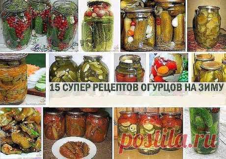 Самые вкусные и оригинальные рецепты огурцов на зиму