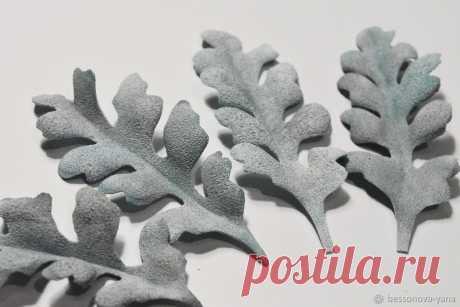 Создаем листья цинерарии из фоамирана Цинерария — растение, заслужившее любовь дачников и ландшафтных дизайнеров за оригинальную форму своих ажурных листьев. Помимо формы листья привлекают и фактурой, напоминающей бархат.