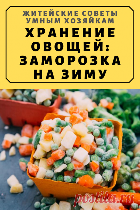 Хранение овощей: Заморозка на зиму | Житейские Советы