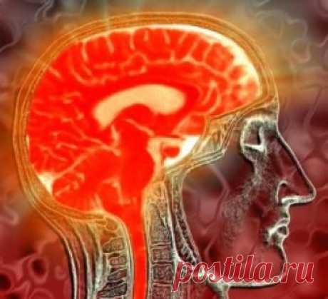 Упражнения на развитие памяти для успешности в делах Входными воротами интеллекта память называют совсем не случайно. Ведь правильно организованный процесс запоминания информации позволяет избавить нашу психику от ненужных