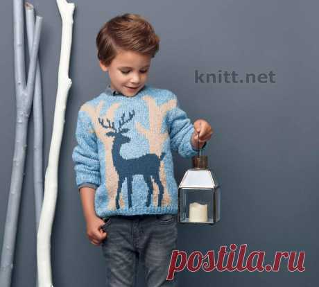 Knitted pullover for the boy with a pattern a deer