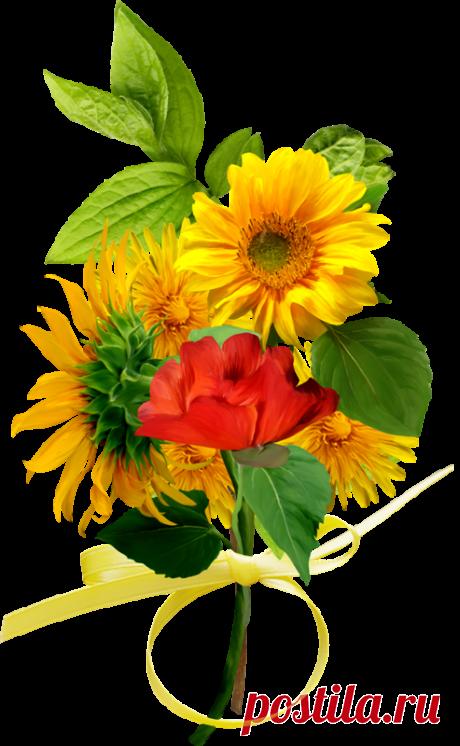 Красивый цветочный декор клипарт PNG