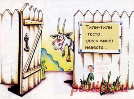 Пуси-пуси юмор для девушек и женщин. Подборка прикольных картинок и фото №ofigennaja-10380324112019 | Офигенная
