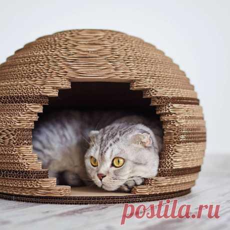 Cat house cat house modern pet house cat house sphere cat