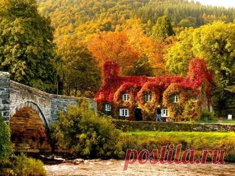 Золотая осень в Великобритании - Путешествуем вместе