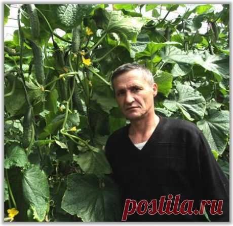 Азат Заляев