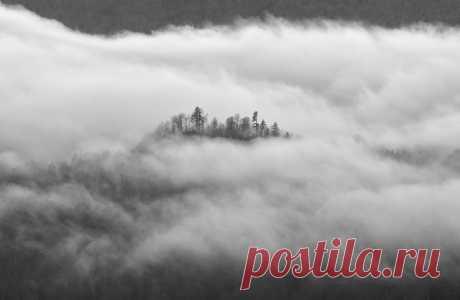 Облачный лес в Азиш-Тау, Республика Адыгея. Фотограф – Андрей Смольников