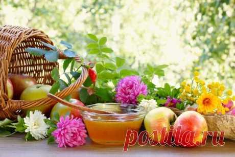 ღСоком наполненный ягод пьянящих  Август, ты кладезь даров настоящий!..  Пахнешь медовым и яблочным Спасом,  Дразнишь цветастым садовым убранством…  Морем бескрайним волнуются нивы,  В них золотых колосков переливы,  В каждом зерне- полновесное чудо,  Хлебом единым мы живы покуда.  В ягодник снова заманишь украдкой,  Вымажешь губы черникою сладкой.  Грибом порадуешь в месте лесистом,  Дашь поваляться на сене душистом,  Глядя как в небе играется просинь…  Не за горами дождли...