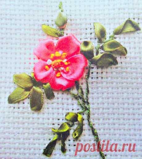 Цветы Шиповника лентами описание работы и схема