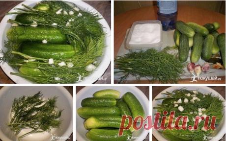 Суточные малосольные огурцы на минералке Сегодня будем готовить вкуснейшие огурчики. Рецепт особенно актуален в преддверии сезона овощей. Сохраняйте себе этот гениальный лайфхак и порадуете домашних и гостей вкуснейшим блюдом!  Ингредиенты: огурцы – 1 килограмм минеральная вода – 1 литр соль – 2 столовых ложки без горки чеснок – 5 з
