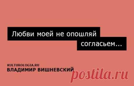 15 искромётных одностиший Владимира Вишневского на каждый день