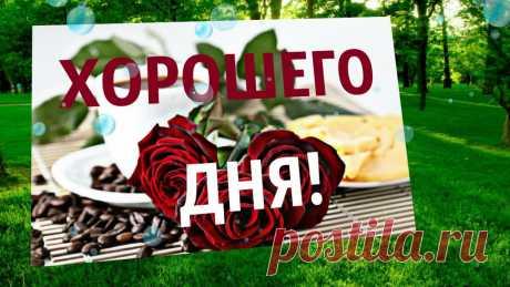 Поздравления (@magnolia0903) TikTok | Смотреть свежие видео Поздравления в TikTok
