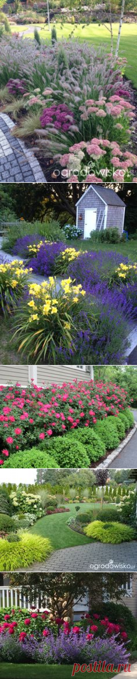 (41) Fabulous mix of ornamental grasses and other perennials. | Great Garden Ideas