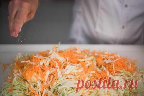 Как квасить капусту – «Еда»
