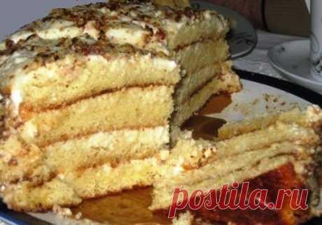 Быстрый и лёгкий рецепт мягкого торта «Алёнушка» со сгущёнкой,