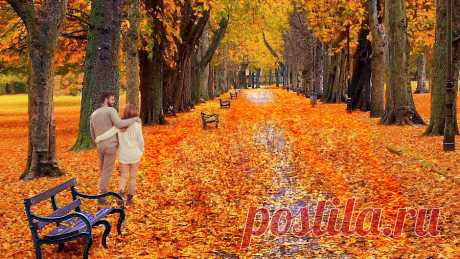 ♥Love is autumn♥