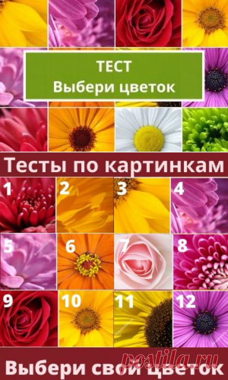 Тесты по картинкам: выбери цветок и узнай сильные стороны | Психология