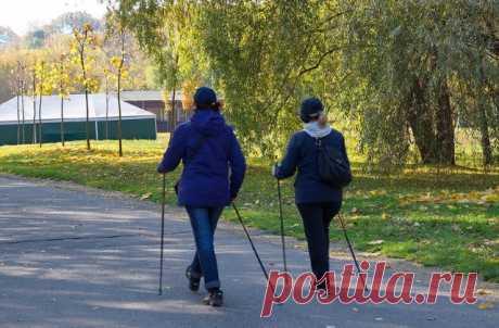 Финская Ходьба с Палками – Польза и Особенности