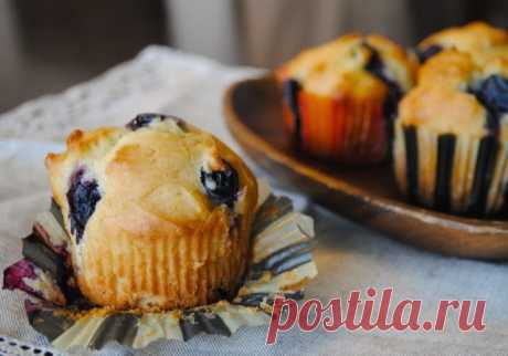 Muffins with bilberry
