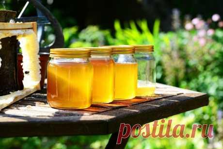 Не только мёд: какие продукты пчеловодства и как используются в медицине В одном улье помещается целая аптека. Известно, что не только сам мёд, но и другие продукты, производимые пчёлами, широко применяются для лечения различных заболеваний – к примеру, маточное молочко или прополис. А знаете ли вы, что такое забрус и перга, чем полезны мерва и подмор?  Мы теперь знаем. Не зря же у «Социум-Агро» есть своя пасека и специалисты, которым ведомы все пчелино-медовые секреты. Кс...
