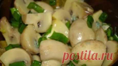 Очень вкусные маринованные грибы Шампиньоны получаются неимоверно ароматными: чеснок с укропом придают изумительную душистость и дополняют вкусовую гамму!