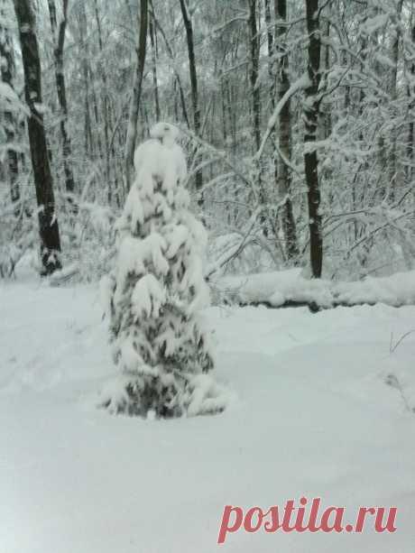 Неужели опять скоро зима ???