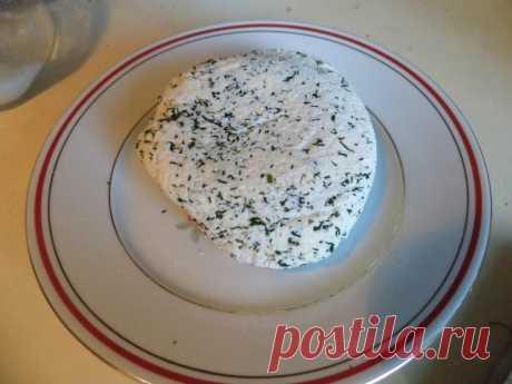 Домашний сыр из молока и кефира рецепт с фото пошагово - 1000.menu