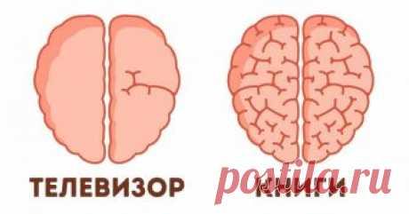 9поразительных примеров того, как мысами влияем нанаш мозг Пожалуй, мозг— самый загадочный орган нашего организма. Ученые постоянно узнают новые факты оего работе, нозагадок по-прежнему много. AdMe.ru решил познакомить вас снаиболее яркими открытиями последних лет вобласти исследования мозга, которые вас наверняка удивят.