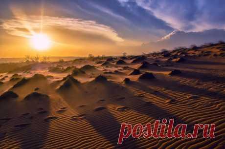 Закат в пустыне на фото Dmitry Ozersky: nat-geo.ru/community/user/185767 💛