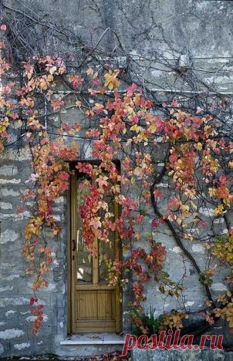 ...Осенний день - жемчужный тихий рай В палитре дивных красок акварельных. В нём пенье птиц и шепот древних тайн, Бесценный дар минуток драгоценных...