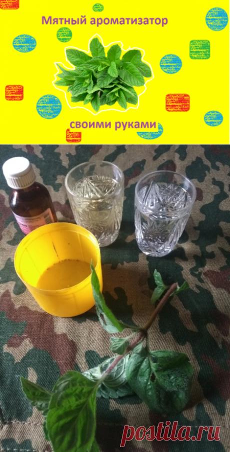 Делаем ароматизатор из мяты, который не оставит в покое не одну рыбу | О рыбалке 🎣 | Яндекс Дзен