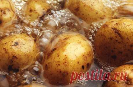 Расскажу, как отварить обычный картофель в мундире в 5 раз вкуснее. Плюс простой способ его чистки и вариант подачи   Кулинарный техникум   Яндекс Дзен
