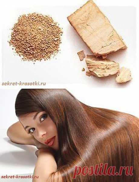 Дрожжи для роста волос | Секрет красотки