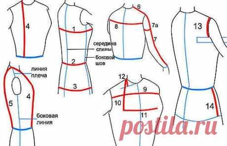 Как правильно снять мерки одежды | Советы портного
