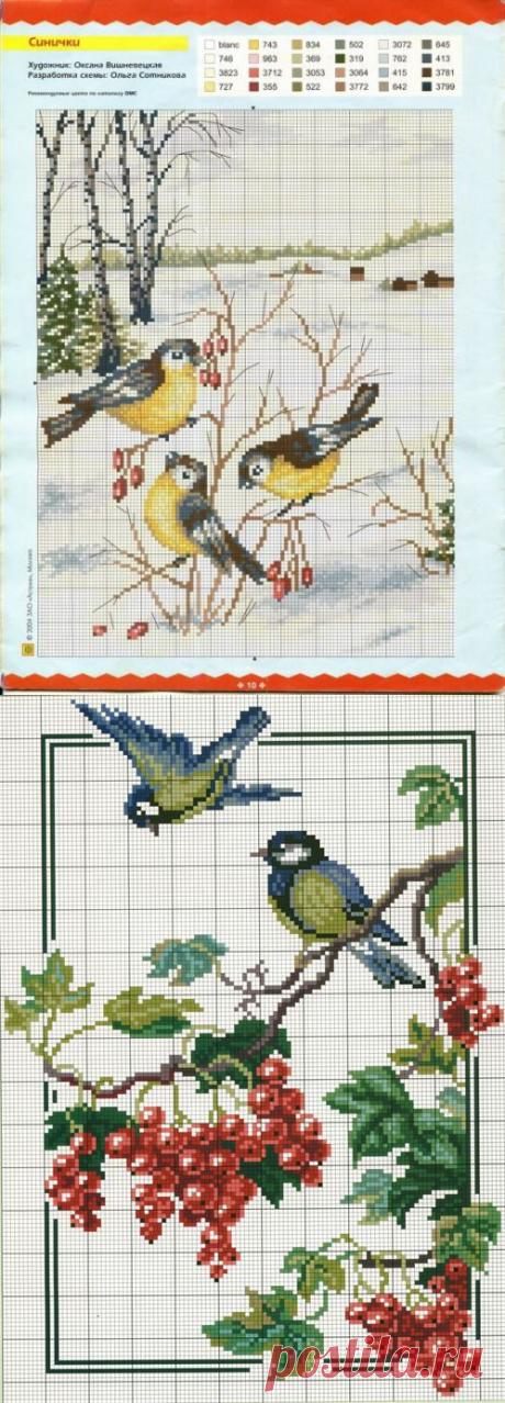 Птички-синички