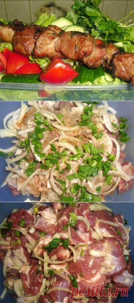 Шашлык из свинины с киви - Простые рецепты