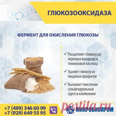 Глюкозооксидаза - фермент катализирует окисление глюкозы молекулярным кислородом с образованием перекиси водорода и глюконовой кислоты. Глюкозооксидаза - это димерный белок, который содержит в качестве кофактора флавинадениндинуклеотид (ФАД), распространённый компонент окислительно-восстановительных реакций. Фермент глюкозооксидаза эффективно применяется в мукомольной и хлебобулочной промышленности, для улучшения качественных характеристик муки и теста.