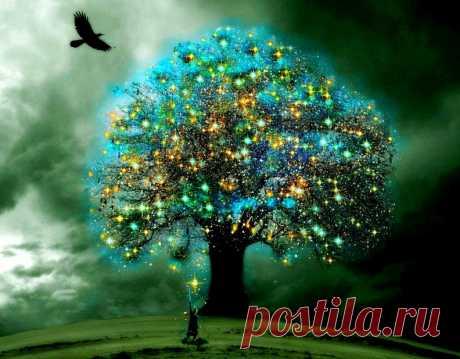 Дерево желаний - притча » Женский Мир
