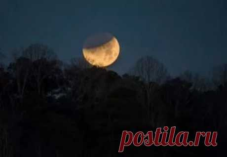 фото луны с земли: 10 тыс изображений найдено в Яндекс.Картинках