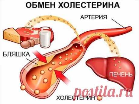 Как снизить холестерин в крови народными средствами: рецепты при повышенном холестерине