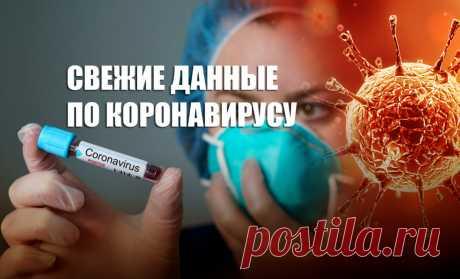 Коронавирус - главные новости по состоянию на 25 марта | Листай.ру ✪